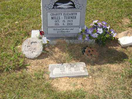 MILLS TURNER, CHARITY ELIZABETH - Lonoke County, Arkansas | CHARITY ELIZABETH MILLS TURNER - Arkansas Gravestone Photos