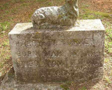TURNER, HARRY W. - Lonoke County, Arkansas | HARRY W. TURNER - Arkansas Gravestone Photos