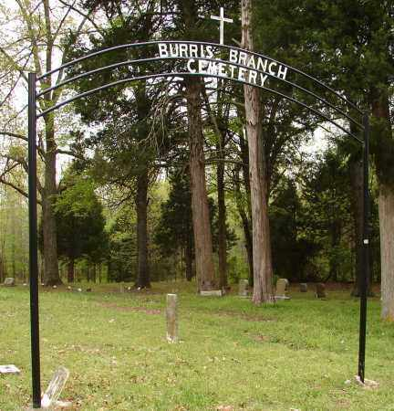 * BURRIS BRANCH, CEMETERY - Lonoke County, Arkansas | CEMETERY * BURRIS BRANCH - Arkansas Gravestone Photos