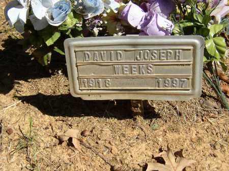 WEEKS, DAVID JOSEPH - Lonoke County, Arkansas | DAVID JOSEPH WEEKS - Arkansas Gravestone Photos