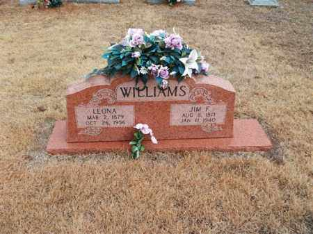 JOHNSON WILLIAMS, LEONA - Lonoke County, Arkansas | LEONA JOHNSON WILLIAMS - Arkansas Gravestone Photos