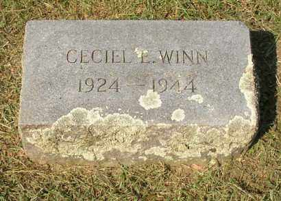 WINN, CECIEL E. - Lonoke County, Arkansas | CECIEL E. WINN - Arkansas Gravestone Photos