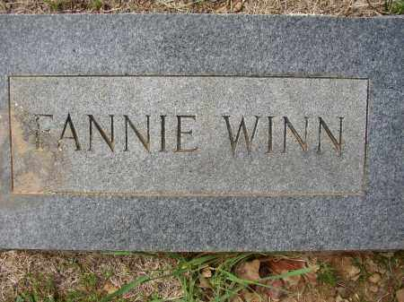 WINN, FANNIE - Lonoke County, Arkansas | FANNIE WINN - Arkansas Gravestone Photos