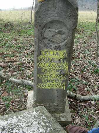 ANTHONY, LELIA A. - Madison County, Arkansas | LELIA A. ANTHONY - Arkansas Gravestone Photos