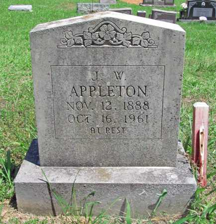 APPLETON, JOHN WALTER - Madison County, Arkansas   JOHN WALTER APPLETON - Arkansas Gravestone Photos