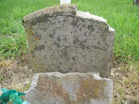 BADGLEY, MARGARET R. - Madison County, Arkansas | MARGARET R. BADGLEY - Arkansas Gravestone Photos