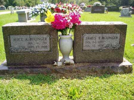 JOHNSON BOLINGER, ALICE ALMA - Madison County, Arkansas | ALICE ALMA JOHNSON BOLINGER - Arkansas Gravestone Photos