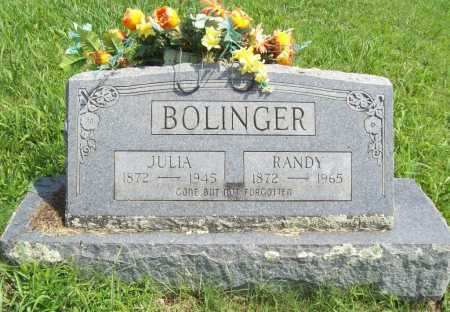 BOLINGER, JULIA - Madison County, Arkansas | JULIA BOLINGER - Arkansas Gravestone Photos