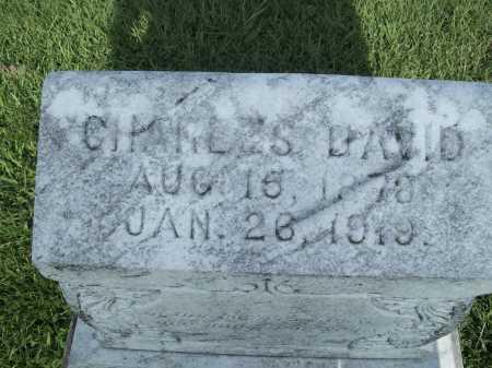 BOYDSTON, CHARLES DAVID (TOP) - Madison County, Arkansas | CHARLES DAVID (TOP) BOYDSTON - Arkansas Gravestone Photos