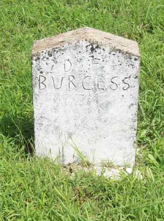 BURGESS, D. F. - Madison County, Arkansas | D. F. BURGESS - Arkansas Gravestone Photos
