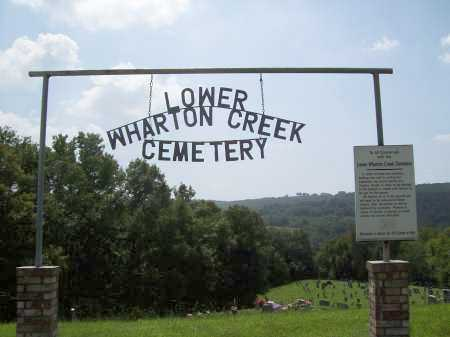 *LOWER WHARTON CREEK GATE,  - Madison County, Arkansas |  *LOWER WHARTON CREEK GATE - Arkansas Gravestone Photos