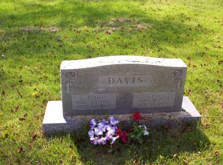 DAVIS, LILLIAN MAE - Madison County, Arkansas | LILLIAN MAE DAVIS - Arkansas Gravestone Photos