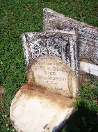 DOAK, JAMES F. - Madison County, Arkansas | JAMES F. DOAK - Arkansas Gravestone Photos