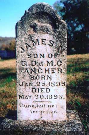 FANCHER, JAMES N. - Madison County, Arkansas | JAMES N. FANCHER - Arkansas Gravestone Photos