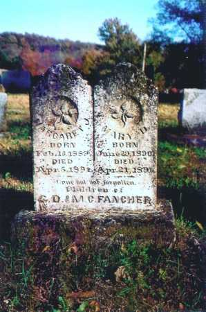 FANCHER, MARY D. - Madison County, Arkansas | MARY D. FANCHER - Arkansas Gravestone Photos