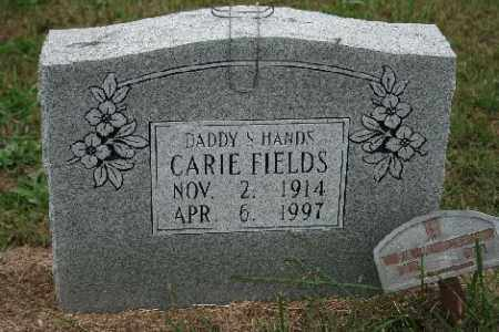 FIELDS, CARIE - Madison County, Arkansas | CARIE FIELDS - Arkansas Gravestone Photos