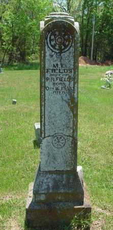 BURNS FIELDS, MARY ELIZABETH - Madison County, Arkansas | MARY ELIZABETH BURNS FIELDS - Arkansas Gravestone Photos