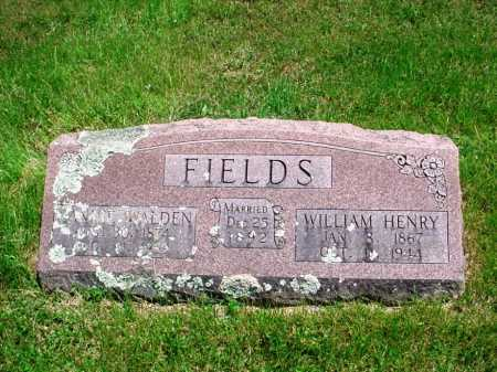 FIELDS, WILLIAM HENRY - Madison County, Arkansas | WILLIAM HENRY FIELDS - Arkansas Gravestone Photos