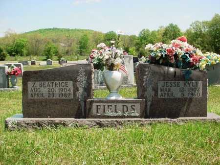 FIELDS, JESSE KYLE - Madison County, Arkansas | JESSE KYLE FIELDS - Arkansas Gravestone Photos