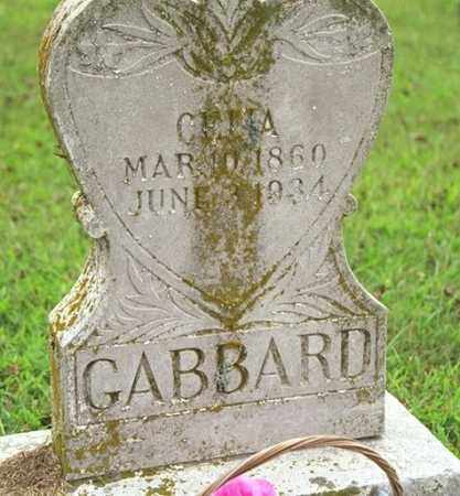 GABBARD, CELIA - Madison County, Arkansas | CELIA GABBARD - Arkansas Gravestone Photos