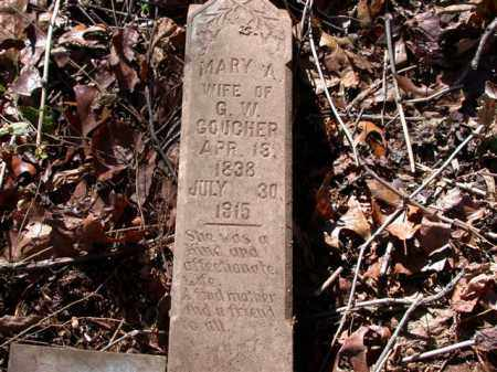 GOUCHER, MARY ANN - Madison County, Arkansas | MARY ANN GOUCHER - Arkansas Gravestone Photos