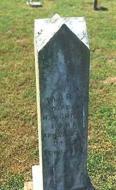 GRIGG, MARY SARAH - Madison County, Arkansas | MARY SARAH GRIGG - Arkansas Gravestone Photos