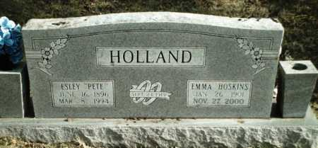 HOSKINS HOLLAND, EMMA - Madison County, Arkansas | EMMA HOSKINS HOLLAND - Arkansas Gravestone Photos