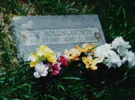 HOLLINGSWORTH, JIM - Madison County, Arkansas | JIM HOLLINGSWORTH - Arkansas Gravestone Photos