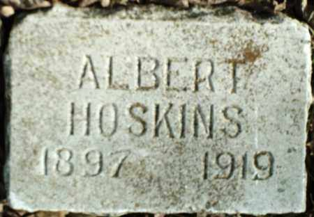 HOSKINS, ALBERT - Madison County, Arkansas | ALBERT HOSKINS - Arkansas Gravestone Photos
