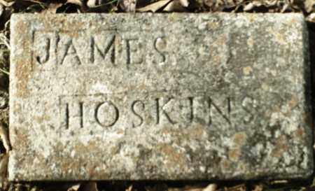 HOSKINS, JAMES - Madison County, Arkansas | JAMES HOSKINS - Arkansas Gravestone Photos