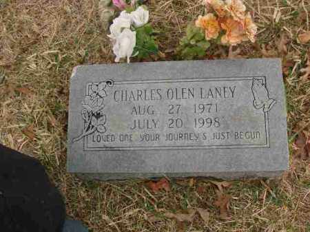 LANEY, CHARLES OLEN - Madison County, Arkansas | CHARLES OLEN LANEY - Arkansas Gravestone Photos