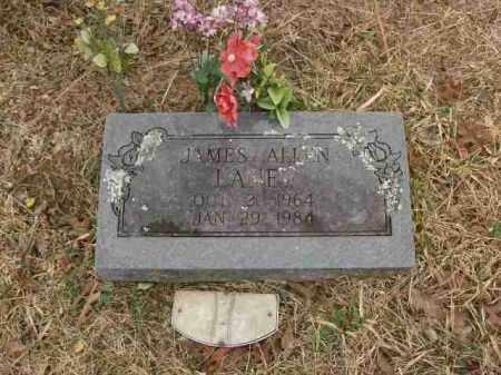 "LANEY, JAMES ""JIMMY"" - Madison County, Arkansas | JAMES ""JIMMY"" LANEY - Arkansas Gravestone Photos"