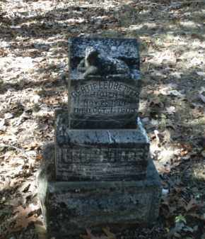 LEDBETTER, GERTIE - Madison County, Arkansas | GERTIE LEDBETTER - Arkansas Gravestone Photos