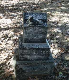 LEDBETTER, GERTIE - Madison County, Arkansas | GERTIE LEDBETTER - Arkansas Gravestone Photos