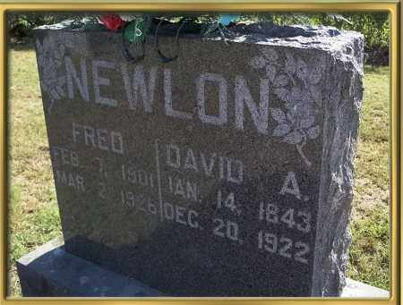 NEWLON, DAVID A {ALBERT} - Madison County, Arkansas | DAVID A {ALBERT} NEWLON - Arkansas Gravestone Photos