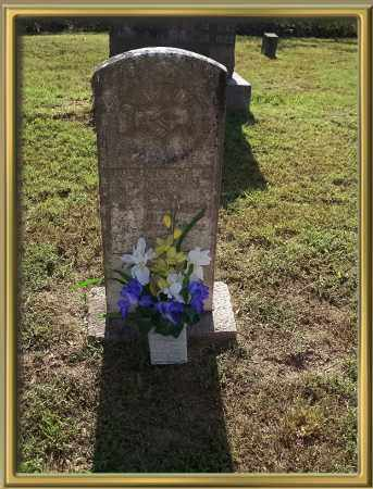 NEWLON, LAURA JANE - Madison County, Arkansas | LAURA JANE NEWLON - Arkansas Gravestone Photos