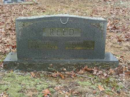 PERRY REED, CALLIE - Madison County, Arkansas | CALLIE PERRY REED - Arkansas Gravestone Photos