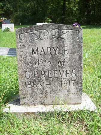 HAYES REEVES, MARY ELIZABETH - Madison County, Arkansas | MARY ELIZABETH HAYES REEVES - Arkansas Gravestone Photos