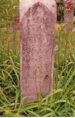 DAUGHERTY SKAGGS, POLLY ANN - Madison County, Arkansas | POLLY ANN DAUGHERTY SKAGGS - Arkansas Gravestone Photos
