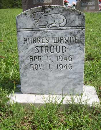 STROUD, AUBREY WAYNE - Madison County, Arkansas | AUBREY WAYNE STROUD - Arkansas Gravestone Photos