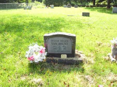 VAN BRUNT, SYLVIA HELEN - Madison County, Arkansas | SYLVIA HELEN VAN BRUNT - Arkansas Gravestone Photos