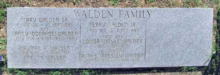 WALDEN, TERRY, SR. - Madison County, Arkansas | TERRY, SR. WALDEN - Arkansas Gravestone Photos