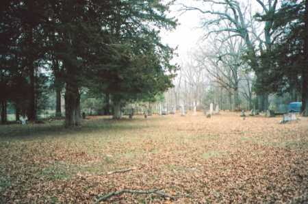 *WALL CEMETERY OVERVIEW,  - Madison County, Arkansas |  *WALL CEMETERY OVERVIEW - Arkansas Gravestone Photos