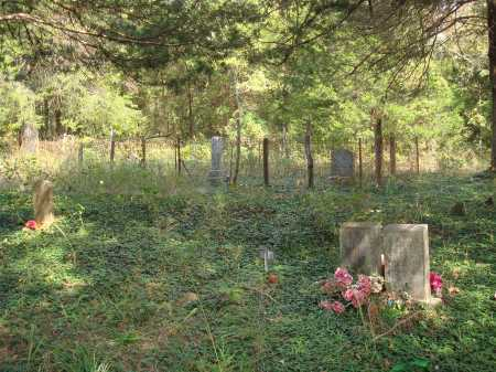 *LANE CEMETERY OVERVIEW,  - Madison County, Arkansas |  *LANE CEMETERY OVERVIEW - Arkansas Gravestone Photos