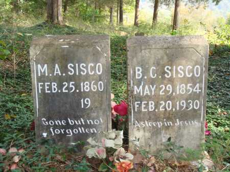 SISCO, MARY ANGELINE - Madison County, Arkansas | MARY ANGELINE SISCO - Arkansas Gravestone Photos