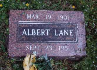 LANE, ALBERT - Madison County, Arkansas | ALBERT LANE - Arkansas Gravestone Photos