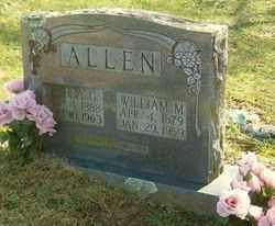 "ALLEN, MELISSA G. ""ELISSA"" - Marion County, Arkansas | MELISSA G. ""ELISSA"" ALLEN - Arkansas Gravestone Photos"