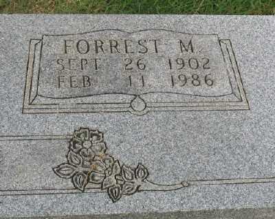 AUSTIN, FORREST M. - Marion County, Arkansas | FORREST M. AUSTIN - Arkansas Gravestone Photos