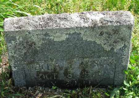 AUSTIN, HOLLY R. - Marion County, Arkansas | HOLLY R. AUSTIN - Arkansas Gravestone Photos