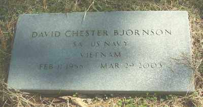 BJORNSON (VETERAN VIET), DAVID CHESTER - Marion County, Arkansas | DAVID CHESTER BJORNSON (VETERAN VIET) - Arkansas Gravestone Photos
